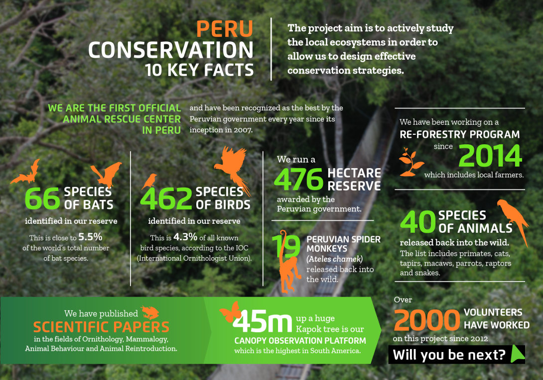 Interesting facts about conservation volunteering in Peru with projects abroad